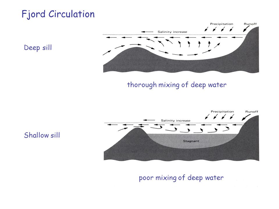 Fjord Circulation Deep sill thorough mixing of deep water Shallow sill