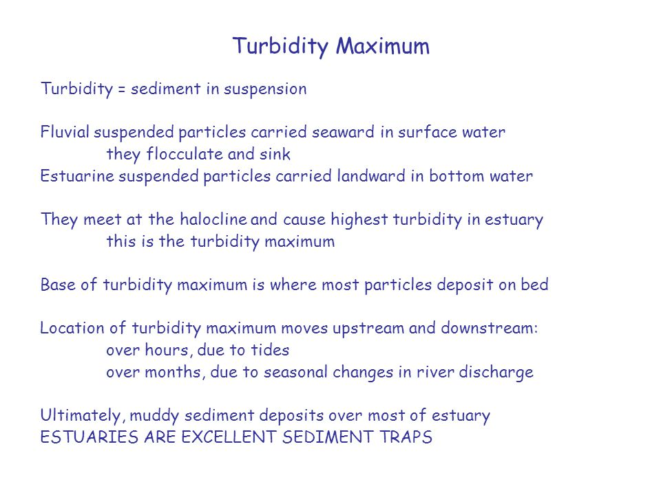 Turbidity Maximum Turbidity = sediment in suspension