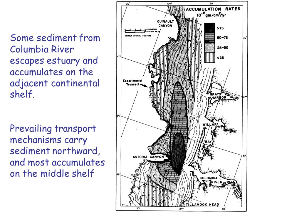 Some sediment from Columbia River escapes estuary and accumulates on the adjacent continental shelf.
