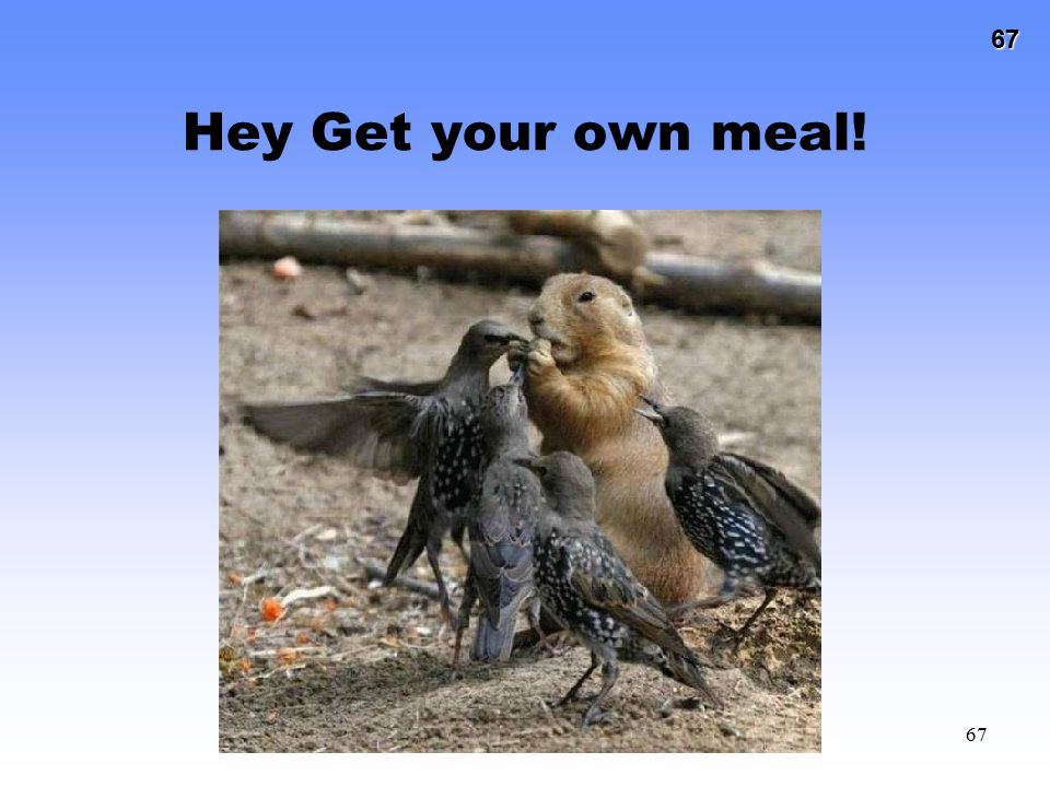 Hey Get your own meal!