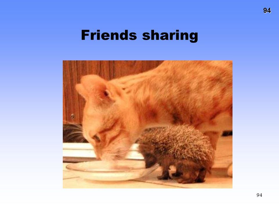 Friends sharing