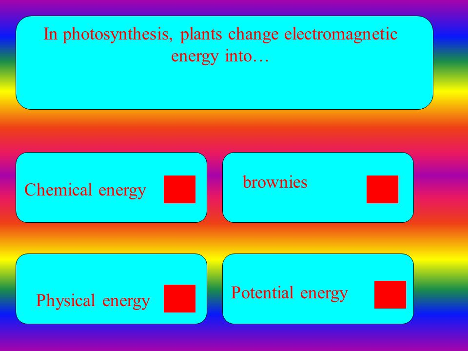 In photosynthesis, plants change electromagnetic energy into…