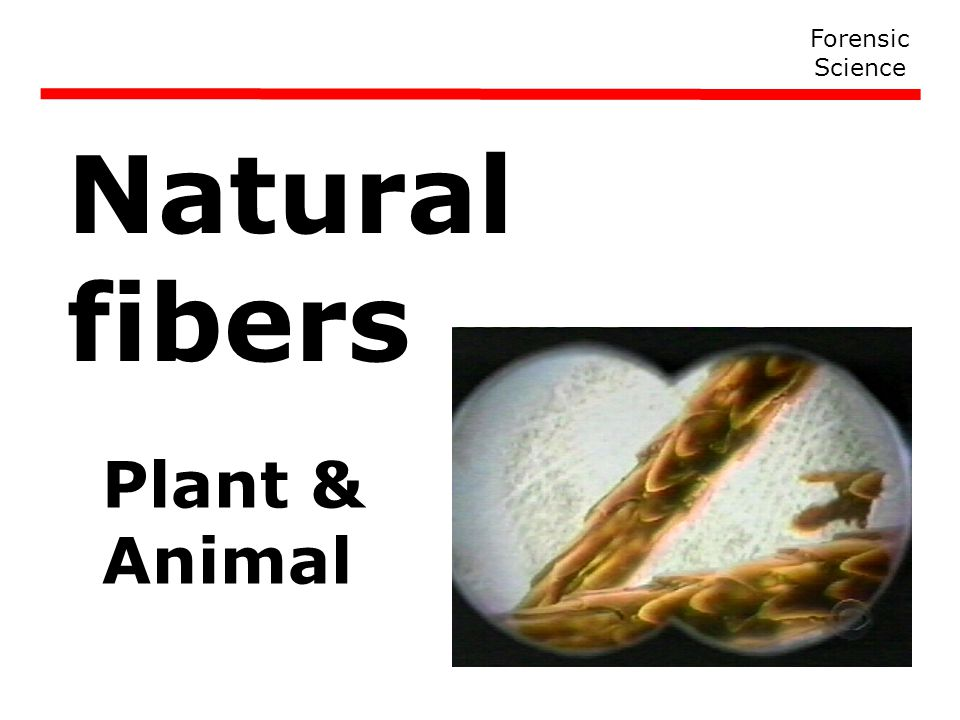 Forensic Science Natural fibers Plant & Animal