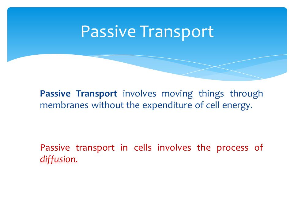 Passive Transport Passive Transport involves moving things through membranes without the expenditure of cell energy.
