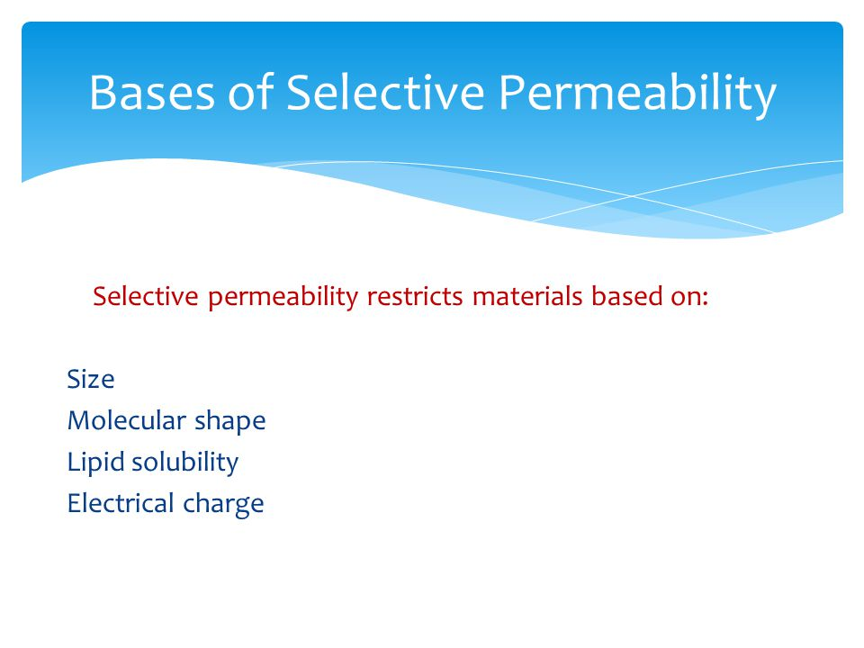 Bases of Selective Permeability