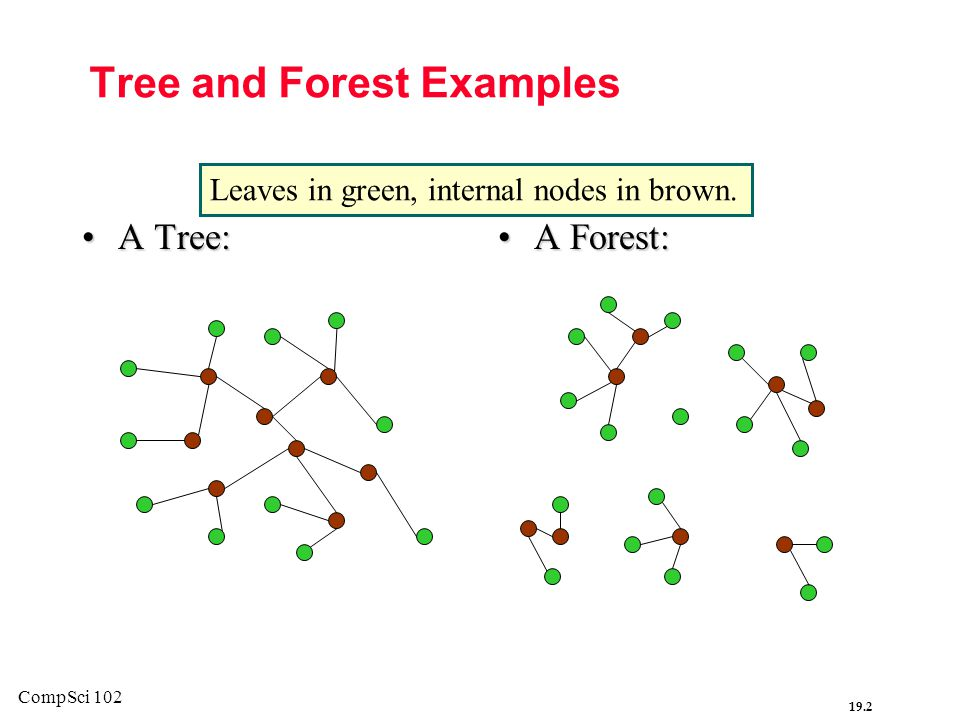 Tree and Forest Examples