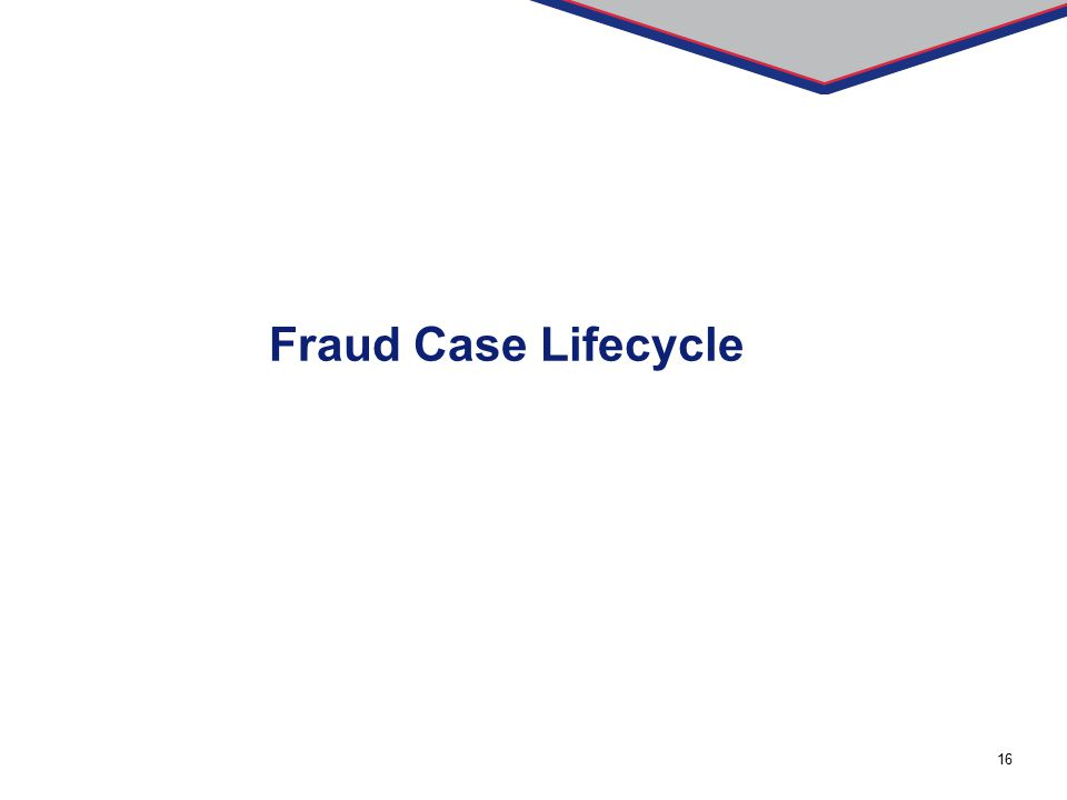 Fraud Case Lifecycle