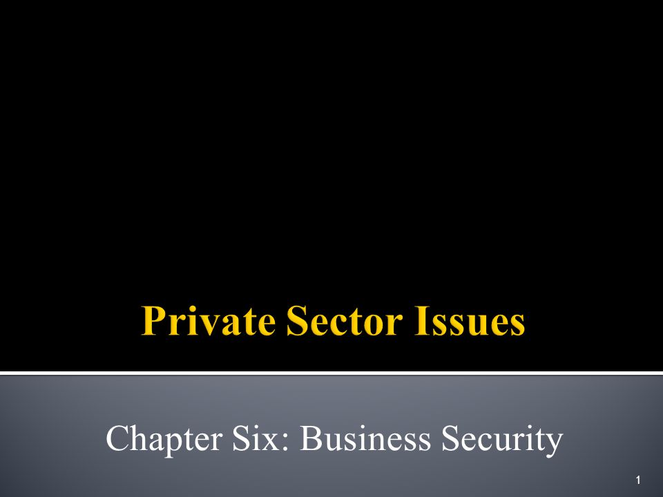 Chapter Six: Business Security