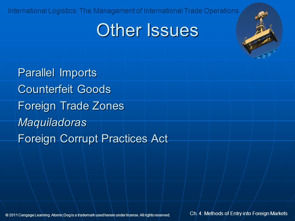 Other Issues Parallel Imports Counterfeit Goods Foreign Trade Zones