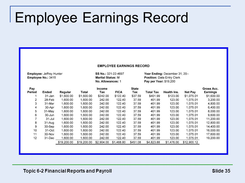 Employee Earnings Record