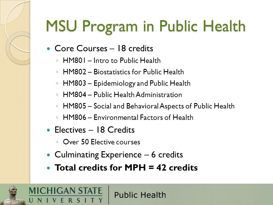 MSU Program in Public Health