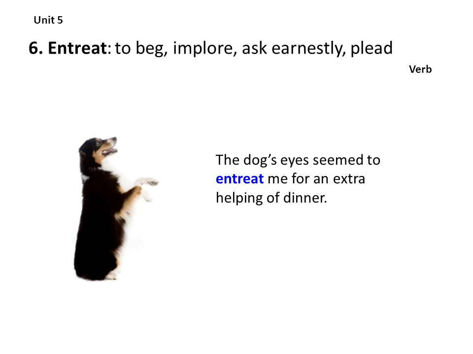 6. Entreat: to beg, implore, ask earnestly, plead