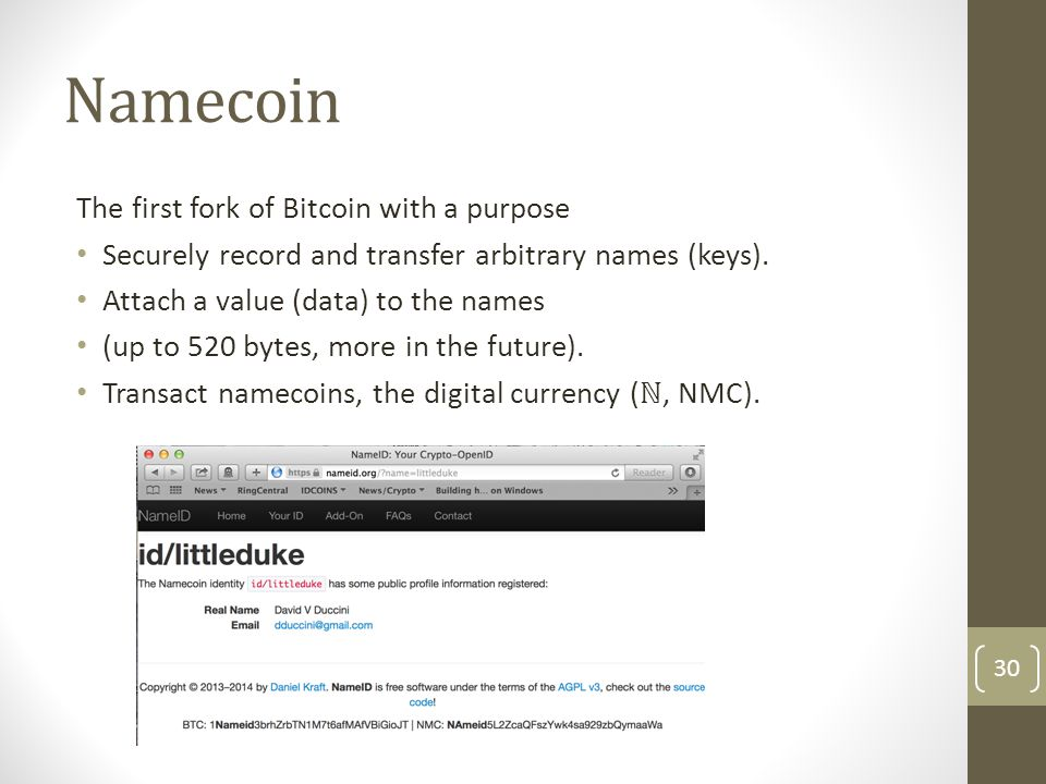 Namecoin as a fault-tolerant Domain Name System