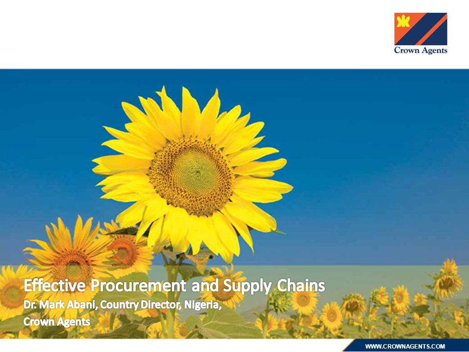 Effective Procurement and Supply Chains