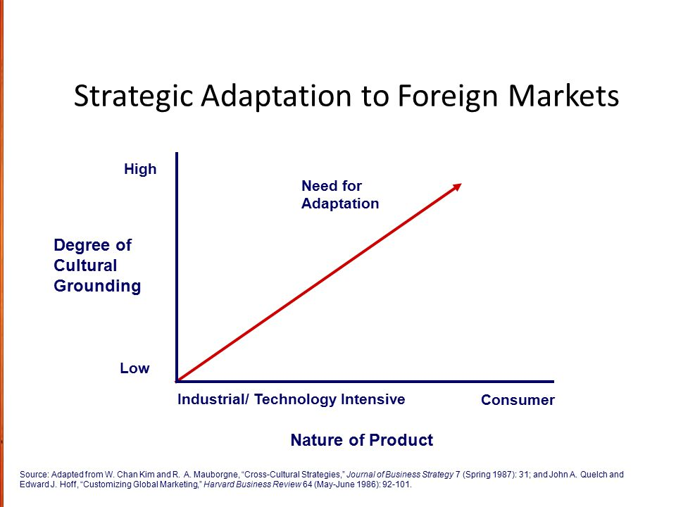 Strategic Adaptation to Foreign Markets