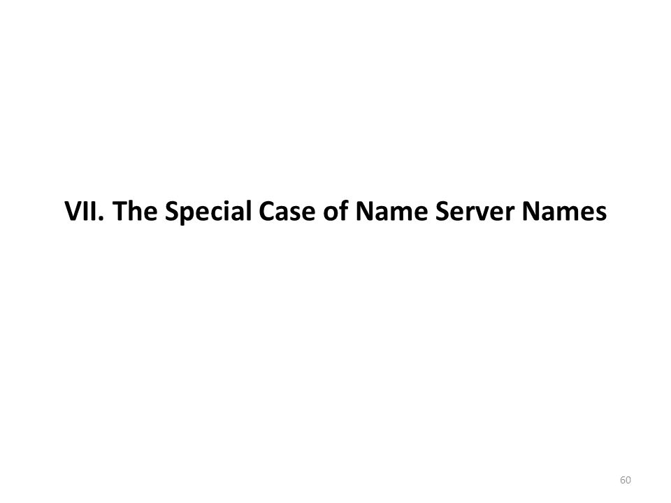 VII. The Special Case of Name Server Names
