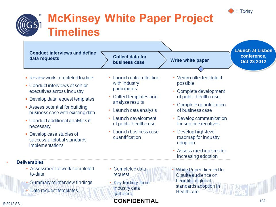 McKinsey White Paper Project Timelines