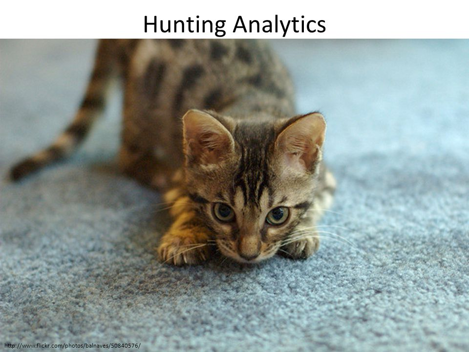 Hunting Analytics http://www.flickr.com/photos/balnaves/50840576/