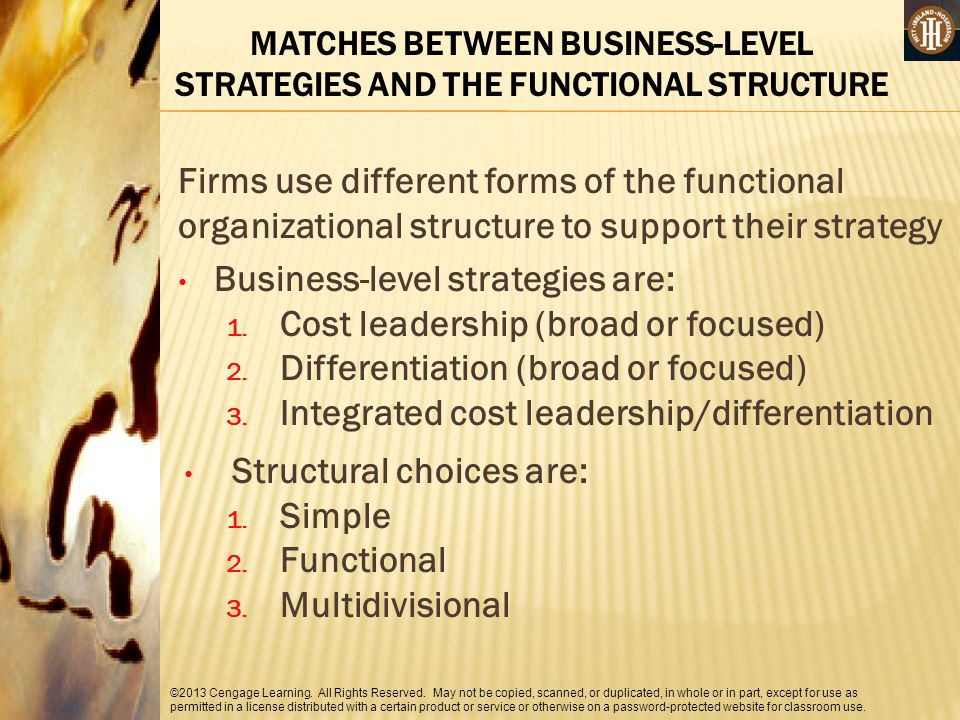 MATCHES BETWEEN BUSINESS-LEVEL STRATEGIES AND THE FUNCTIONAL STRUCTURE