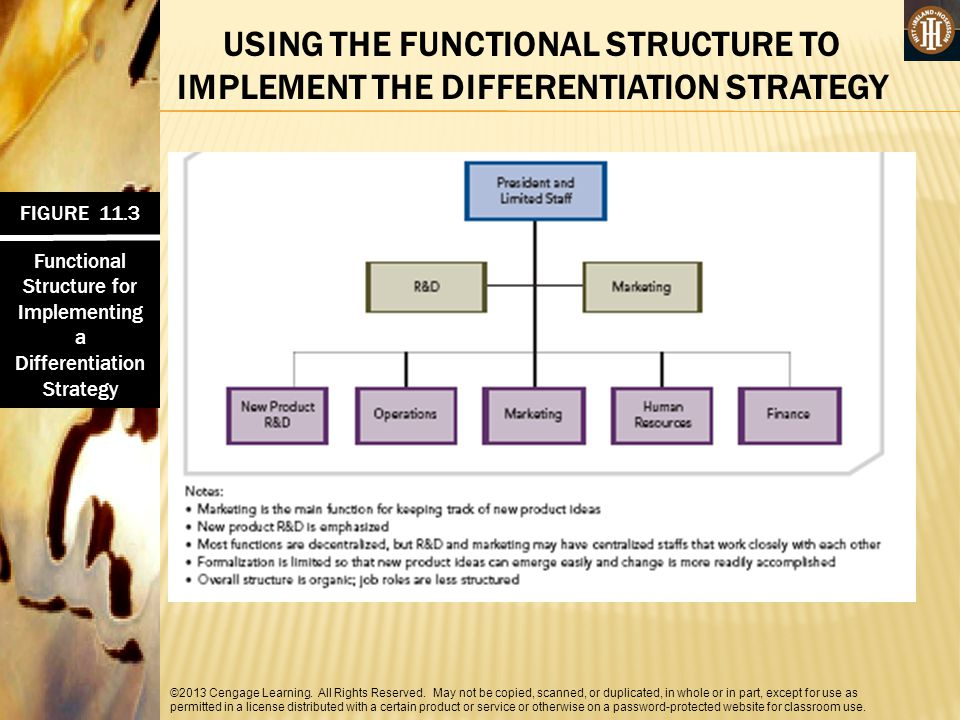 Functional Structure for Implementing a Differentiation Strategy