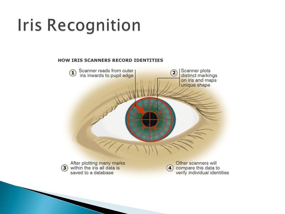 Iris Recognition