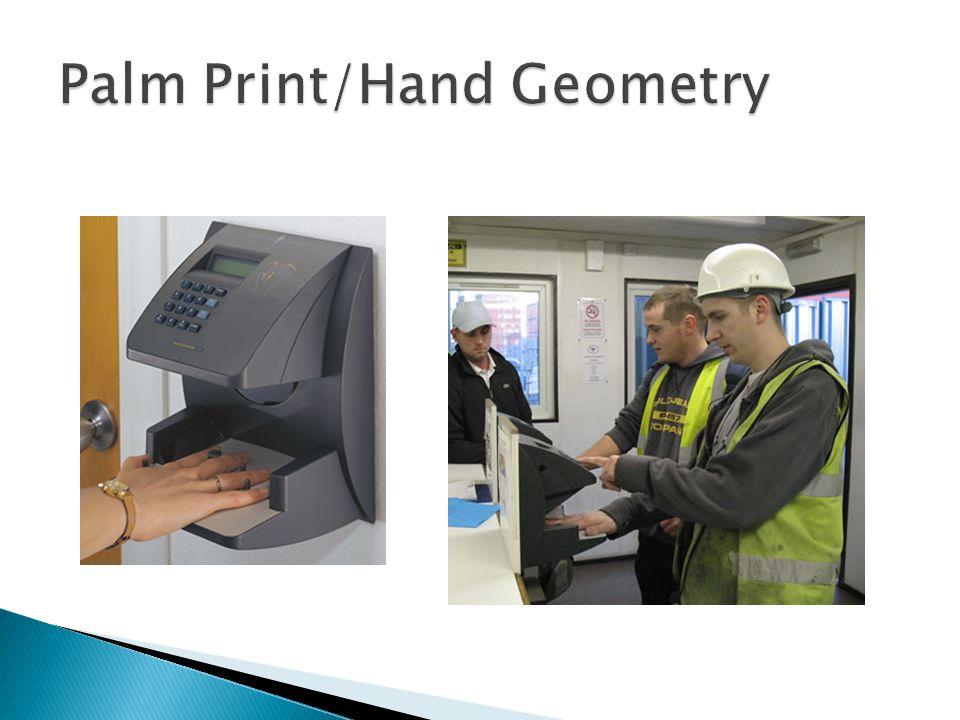 Palm Print/Hand Geometry
