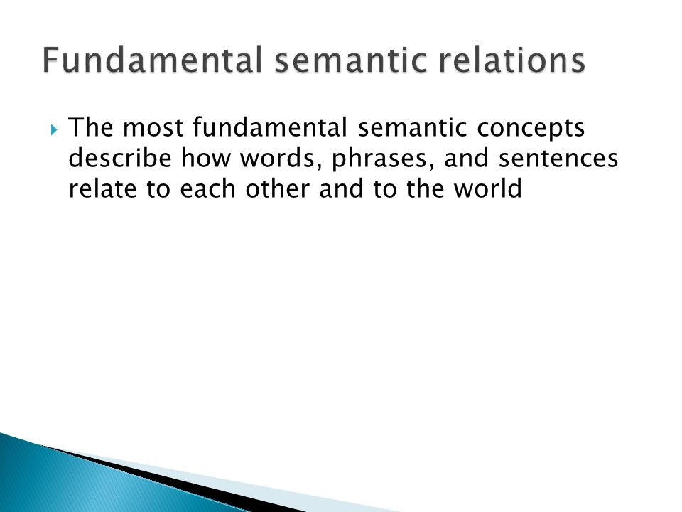 Fundamental semantic relations