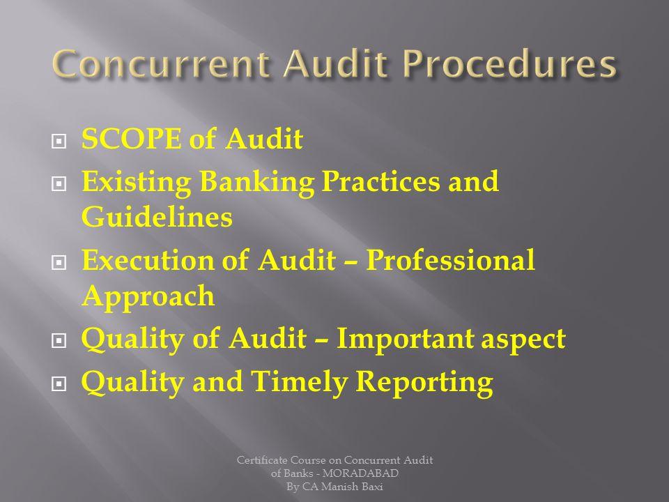 Concurrent Audit Procedures