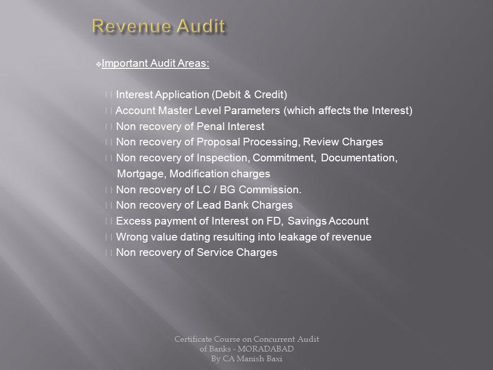 Revenue Audit Important Audit Areas: