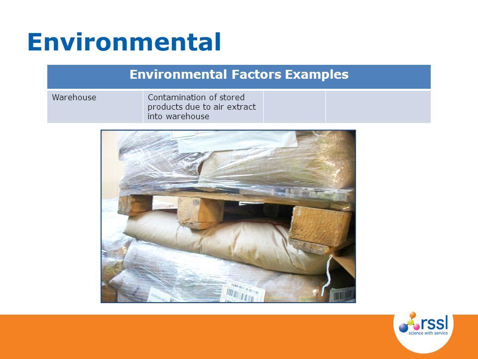 Environmental Factors Examples