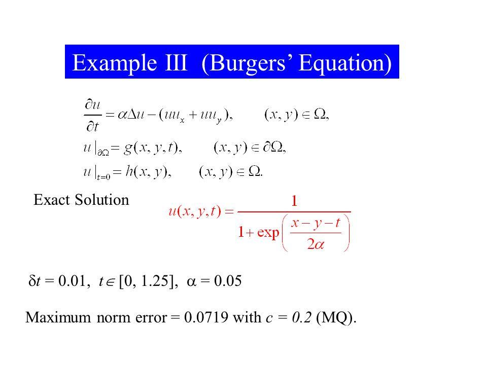 Example III (Burgers' Equation)