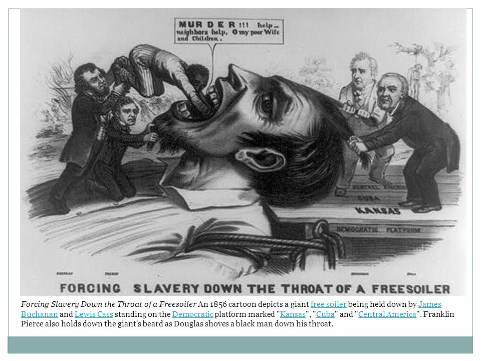 Forcing Slavery Down the Throat of a Freesoiler An 1856 cartoon depicts a giant free soiler being held down by James Buchanan and Lewis Cass standing on the Democratic platform marked Kansas , Cuba and Central America .