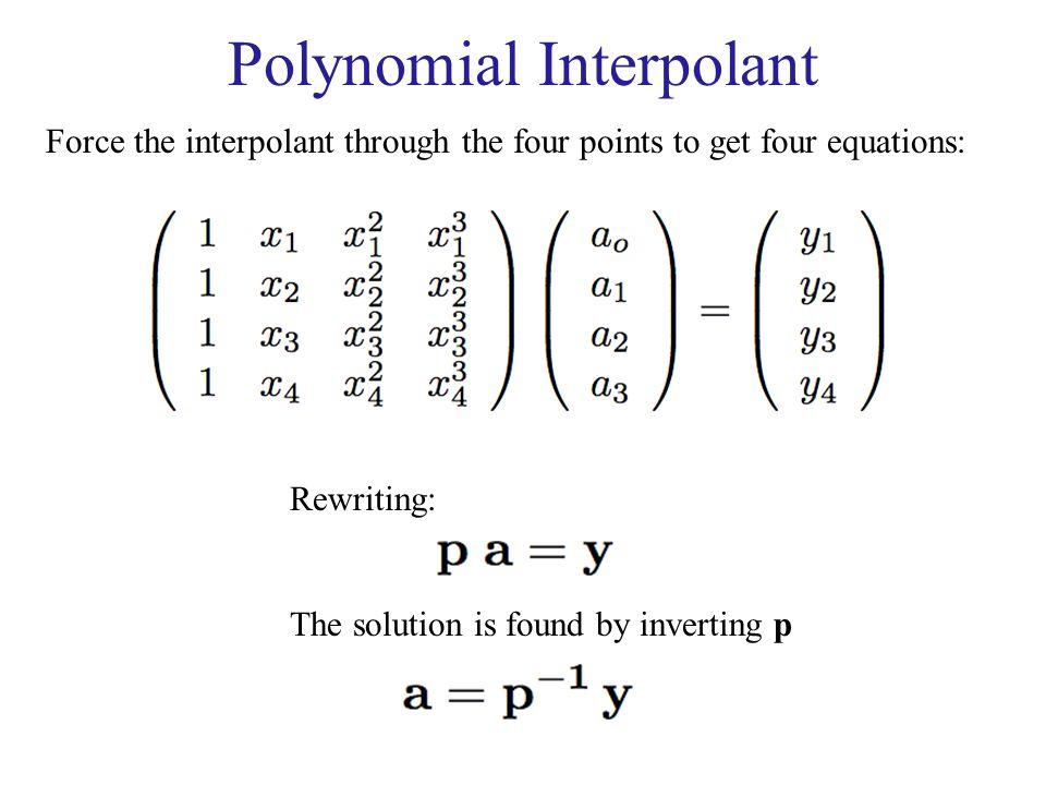 Polynomial Interpolant