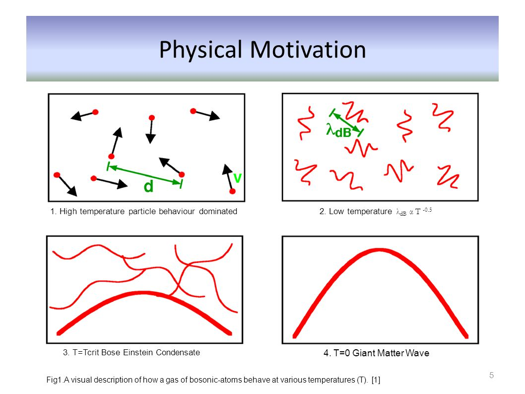 Physical Motivation 4. T=0 Giant Matter Wave