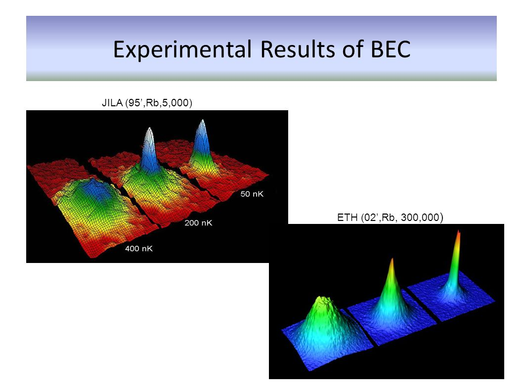 Experimental Results of BEC