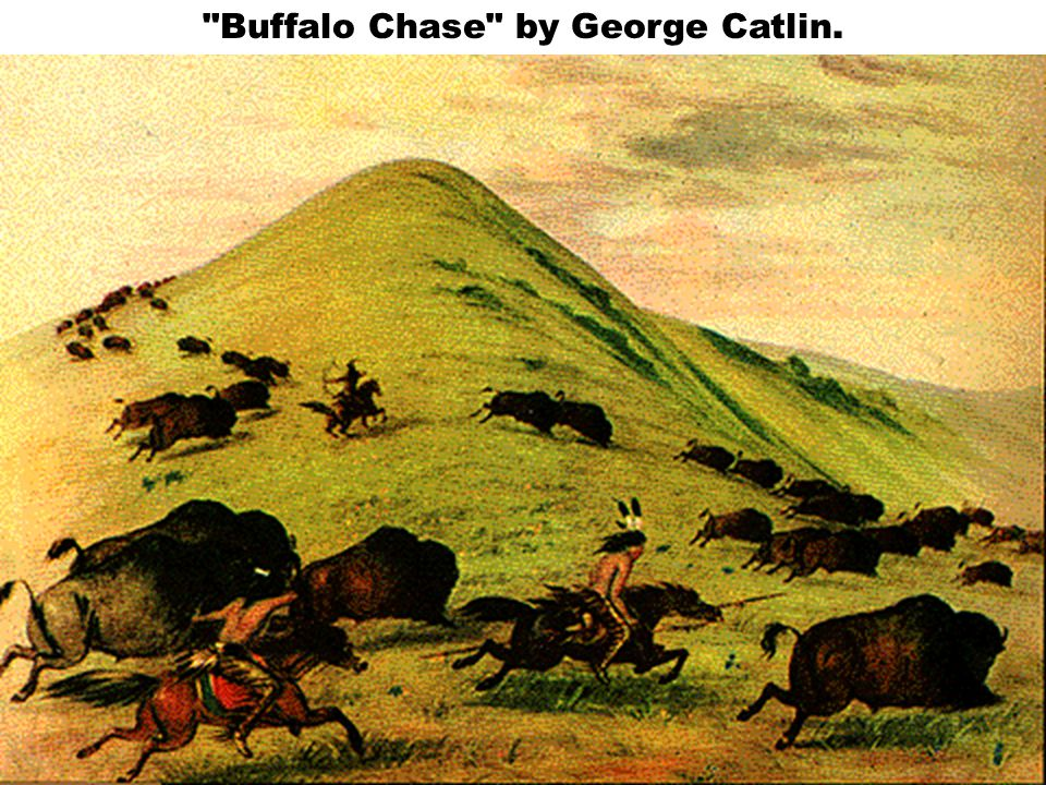 Buffalo Chase by George Catlin.