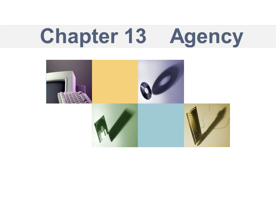 Chapter 13 Agency