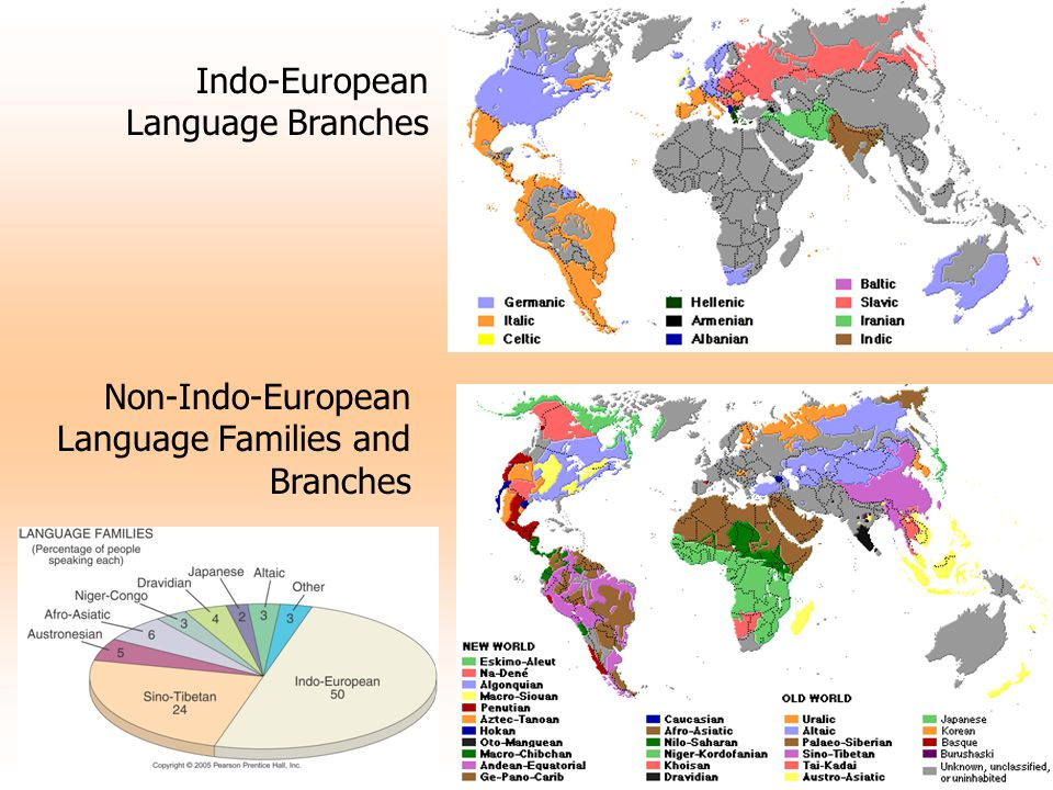 Indo-European Language Branches