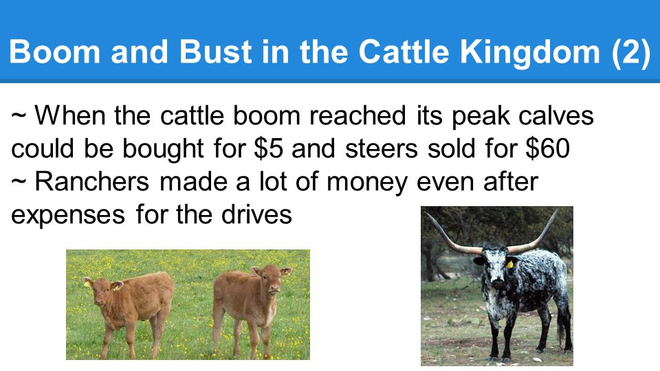 Boom and Bust in the Cattle Kingdom (2)