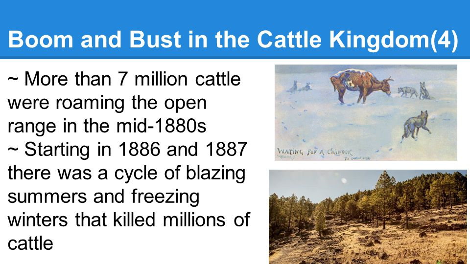 Boom and Bust in the Cattle Kingdom(4)