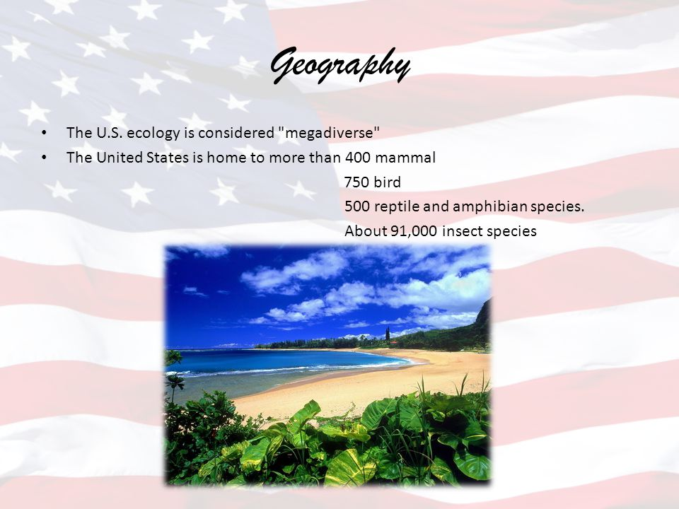 Geography The U.S. ecology is considered megadiverse