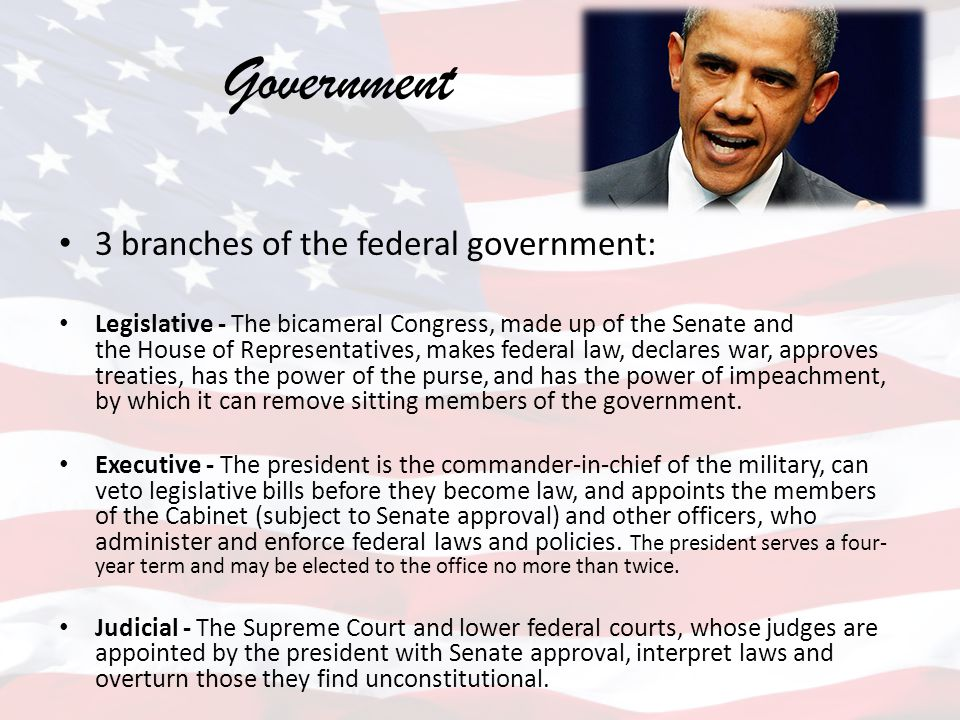 Government 3 branches of the federal government: