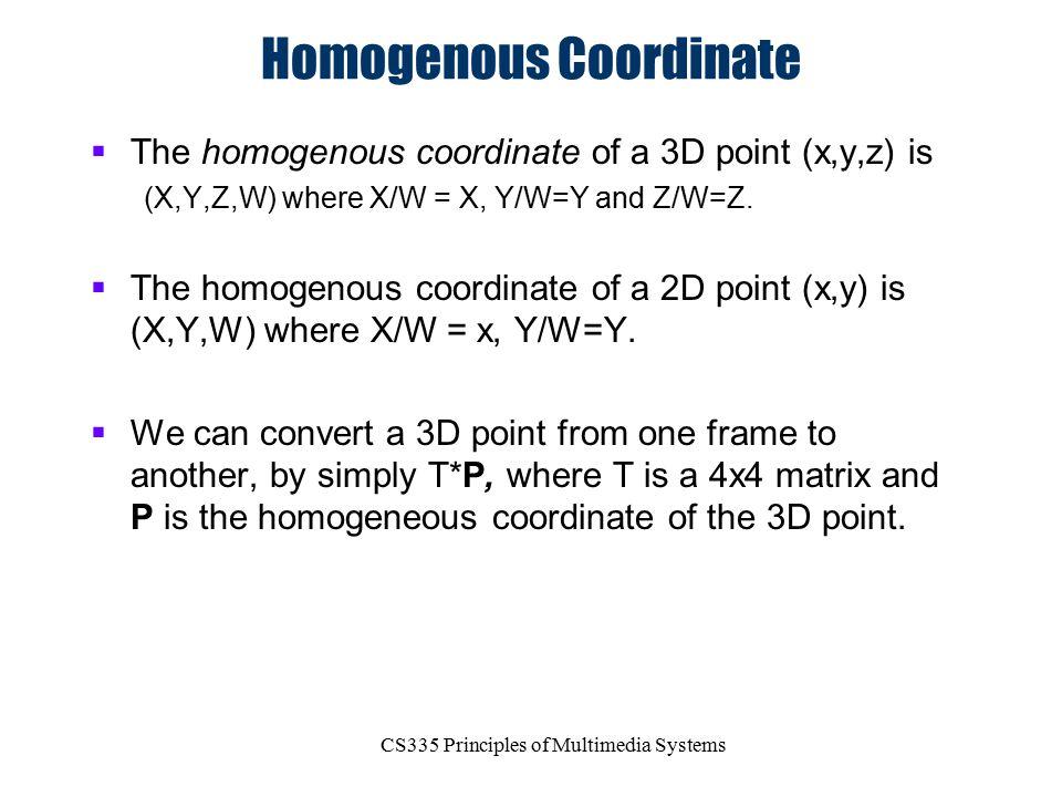 Homogenous Coordinate