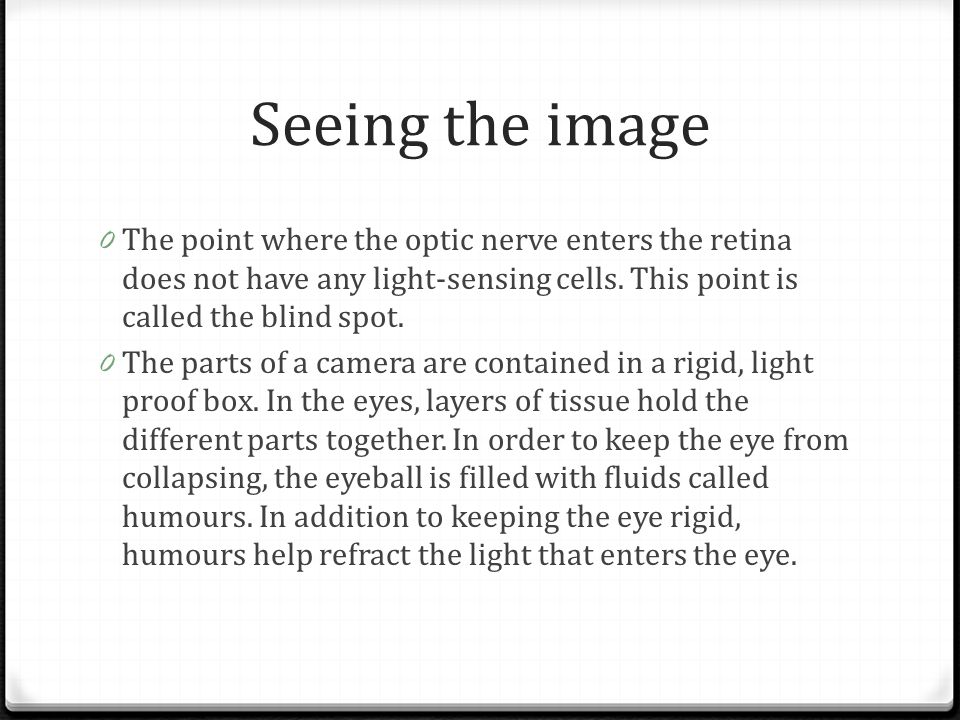 Seeing the image The point where the optic nerve enters the retina does not have any light-sensing cells. This point is called the blind spot.