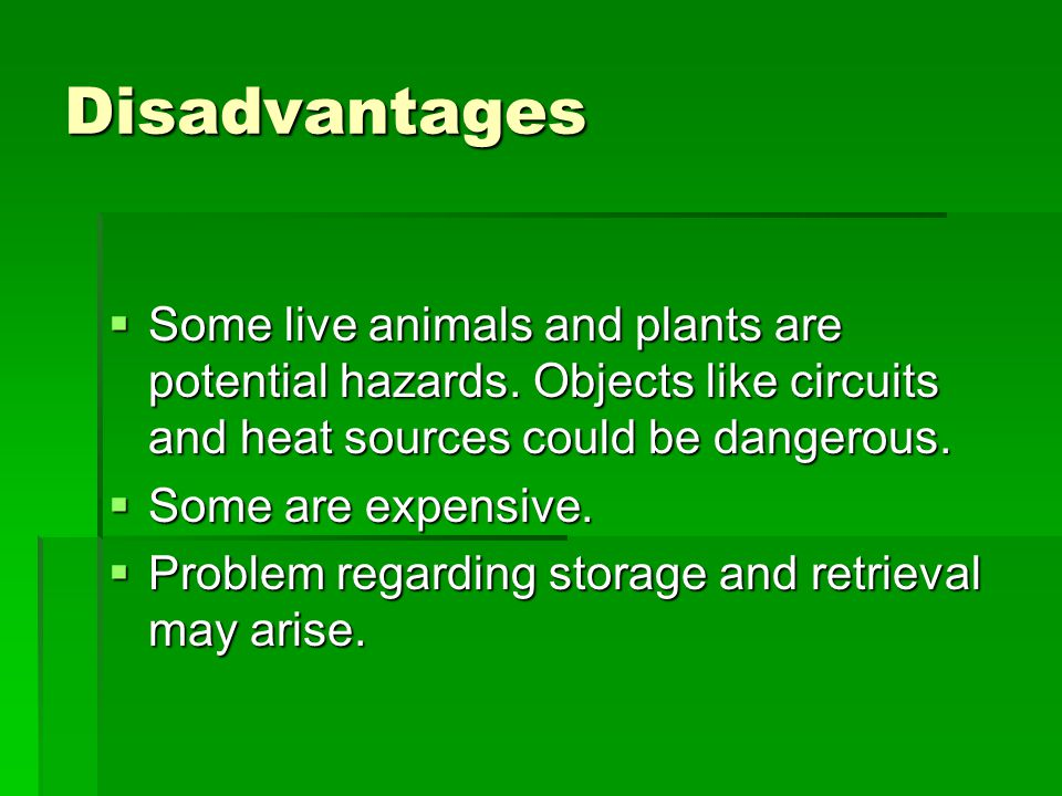 Disadvantages Some live animals and plants are potential hazards. Objects like circuits and heat sources could be dangerous.