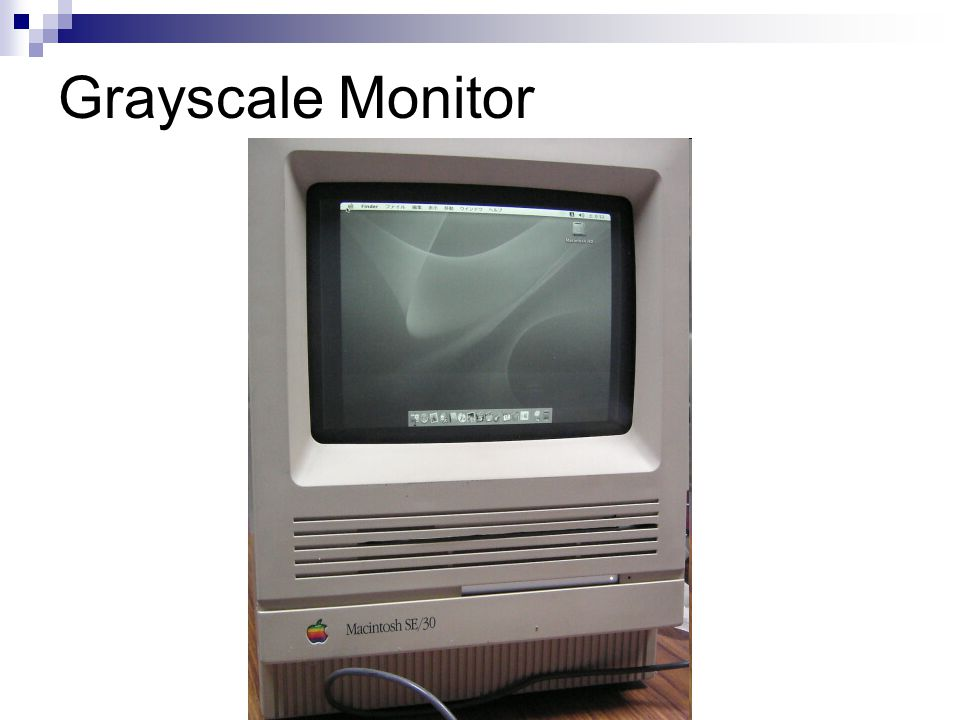 Grayscale Monitor