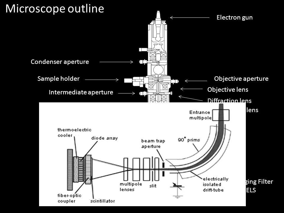 Microscope outline Electron gun Condenser aperture Sample holder