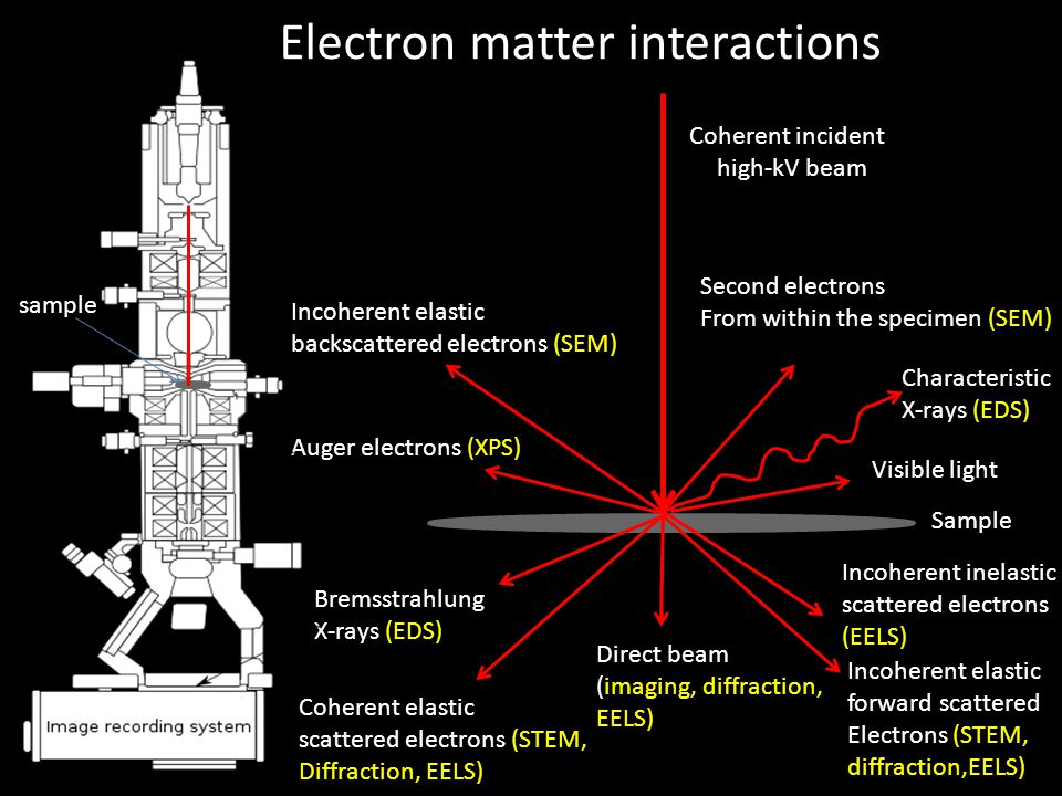Electron matter interactions