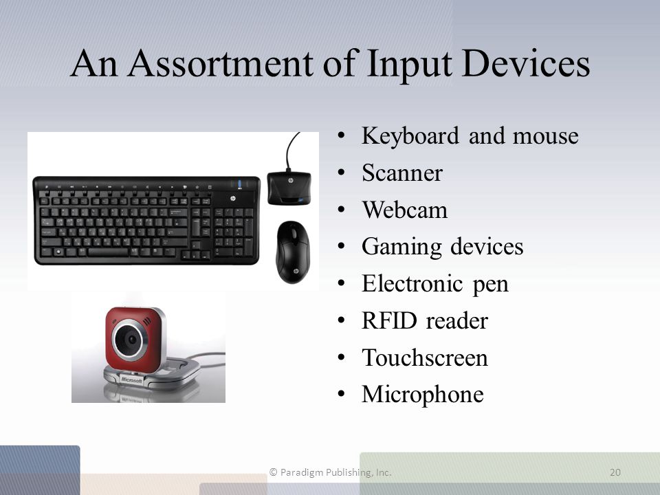 An Assortment of Input Devices