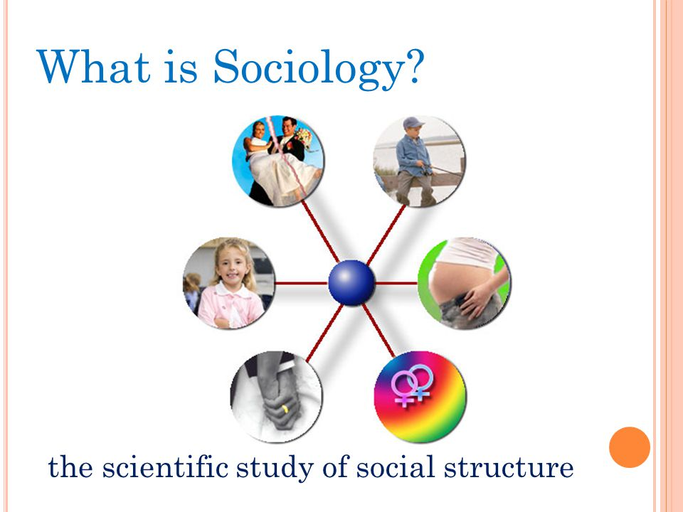 What is Sociology the scientific study of social structure